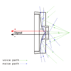 Voice Path - Noise Path